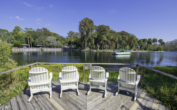 Visit Silver Springs State Park in Ocala this Fall